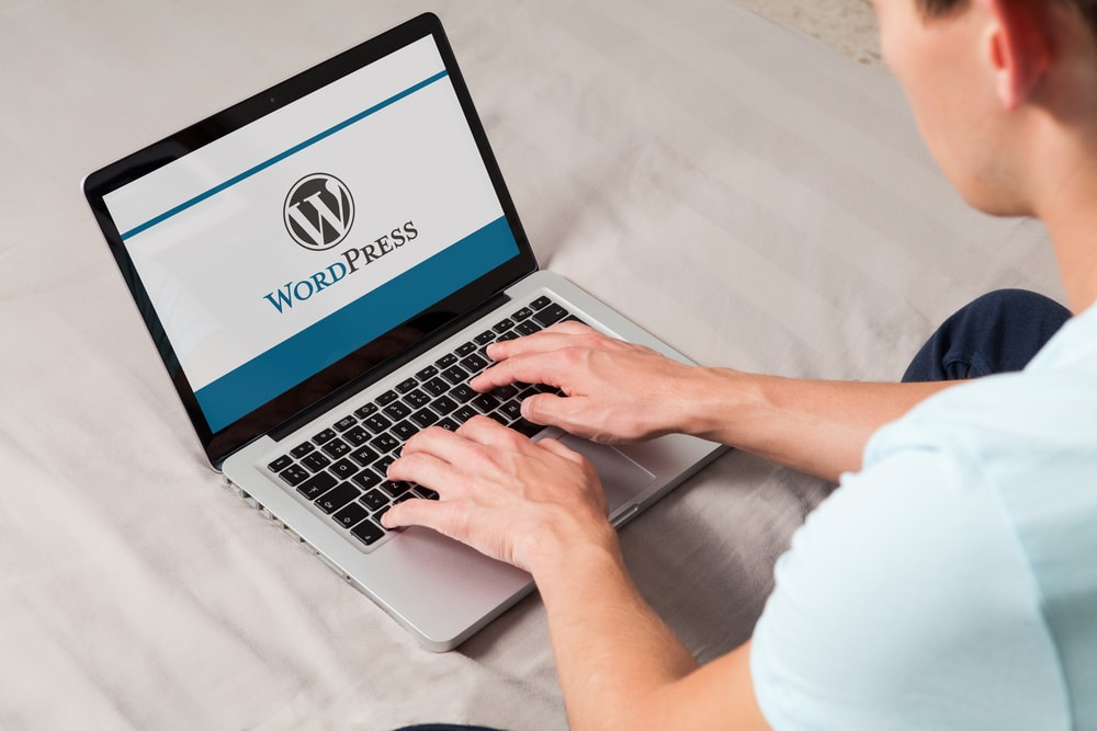 wordpress seo services